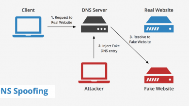dns-spoofing